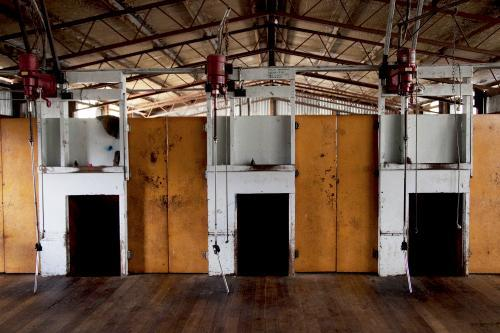 Empty inside of a shearing shed