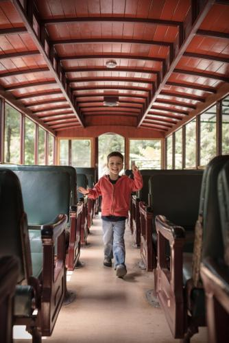Excited 4 year old mixed race boy cheerfully rides the Walhalla historic train