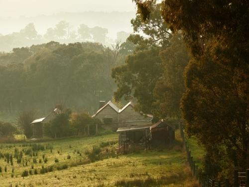 Farmhouse in Kangaroo Ground on Foggy Morning