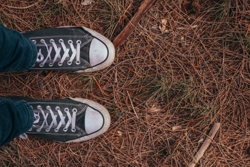 Feet in Old Sneakers standing on Dry Pine Needles.