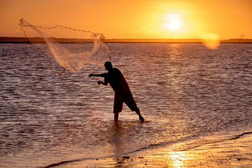 Fisherman throwing a cast net at sunset.