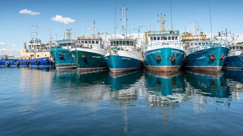 Fishing Boats Lined up in Fremantle Harbour