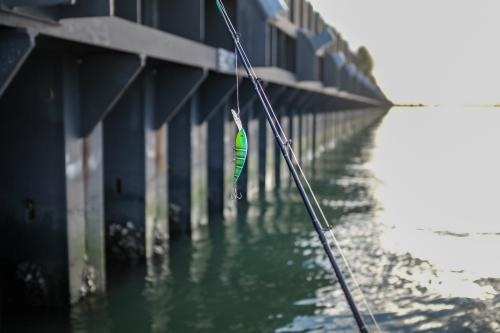 Fishing lure hanging from fishing rod