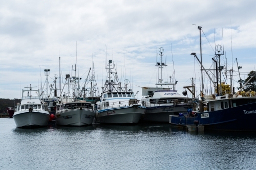 fishing trawlers in ulladulla harbour