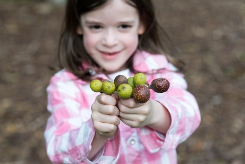 Young girl holding out a handful of plant galls