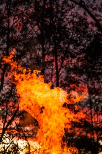 Flames of a bonfire burning up against a pink sunset