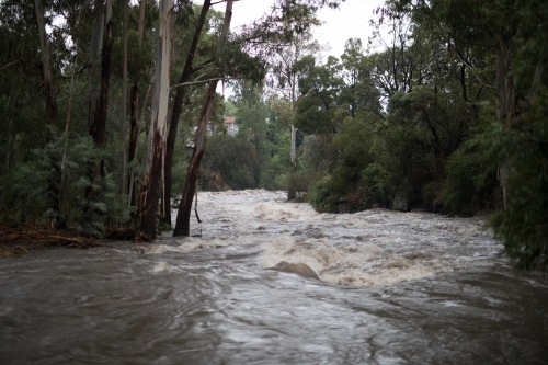 Floodwaters in local creek