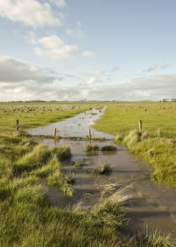 Floodwaters and fence line on paddock