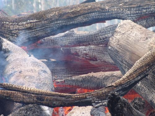 Close up of burning logs in a fire