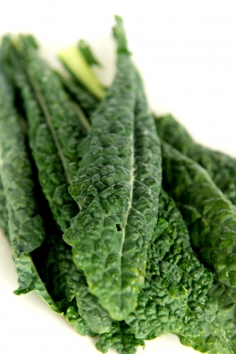 Fresh green kale on white