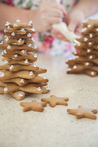 Gingerbread Christmas trees made with star biscuits
