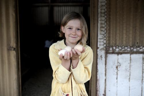 Girl holding free range eggs collected from hen house