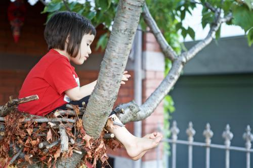 Girl sitting in a tree in the front garden of a terrace house