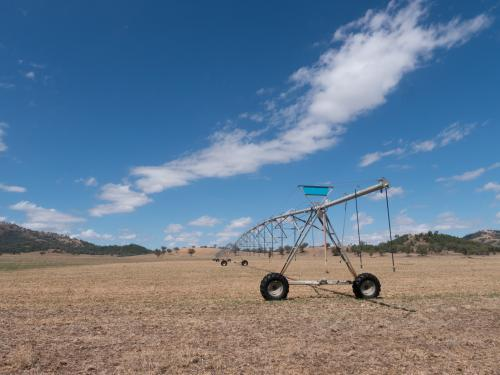 Irrigation spray system on dry summer paddock