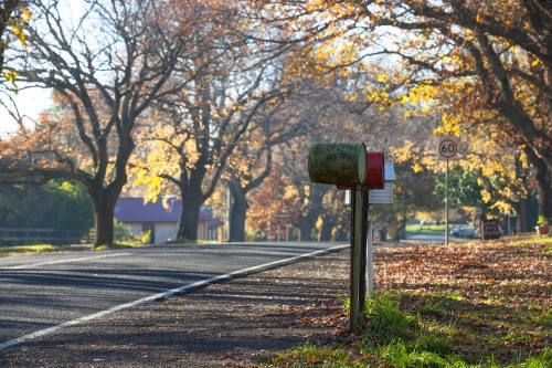 Letterboxes lined up on tree lined road through country town