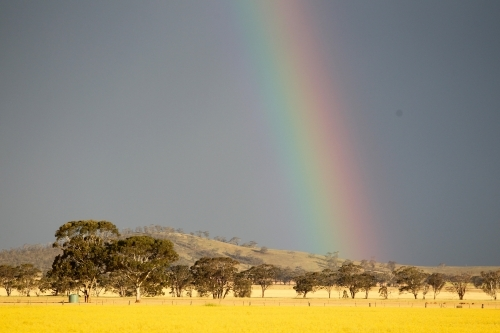 Gold at end of rainbow
