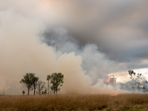 Grass fire with billowing layers of smoke