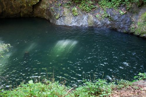 Green swimming hole