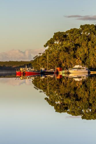 Group of Boats Moored on Glassy Water with Reflections