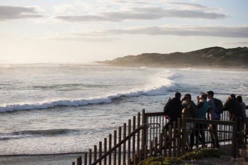 Group of people watching big swell at Margaret River