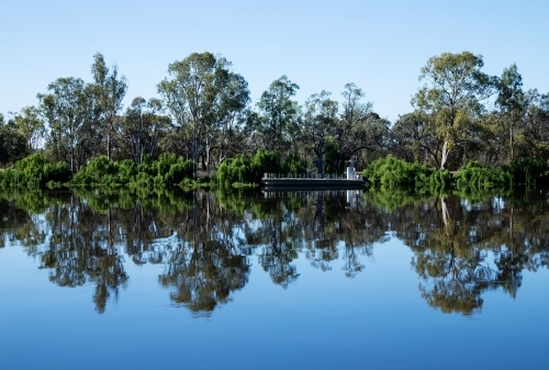 gum trees and barge reflected on still river