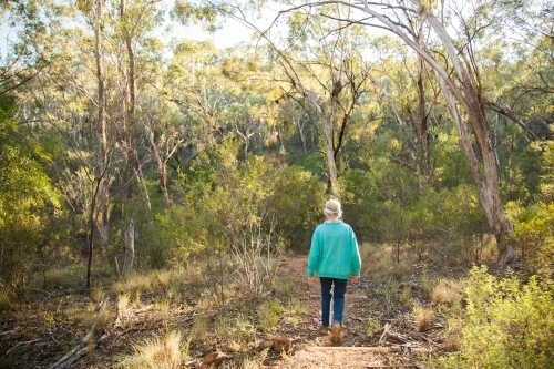 Person walking through bushland in the early morning