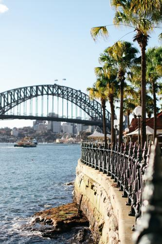 Harbour Bridge and palm trees