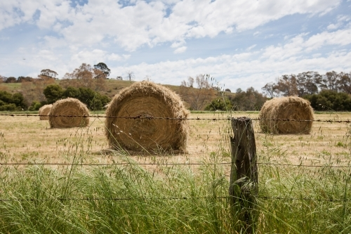 Hay bales in a paddock behind a barbed wire fence