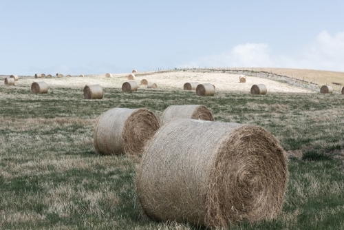 hay bales on the land