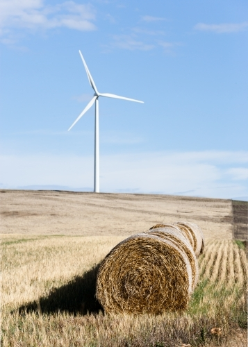 Hay bales with wind turbine in background