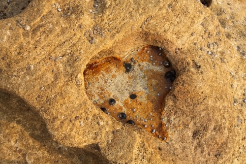 Heart shape eroded into coastal rock