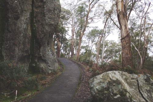 Hiking trail in the bush at Hanging Rock
