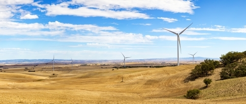 Panorama of wind towers in farming landscape