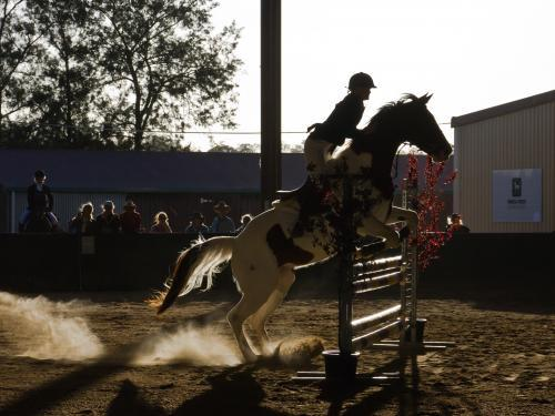 Horse and rider negotiating a jump