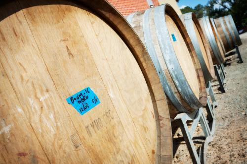 A row of wine barrels