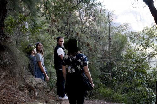 Group of friends on bush walk looking at scenery