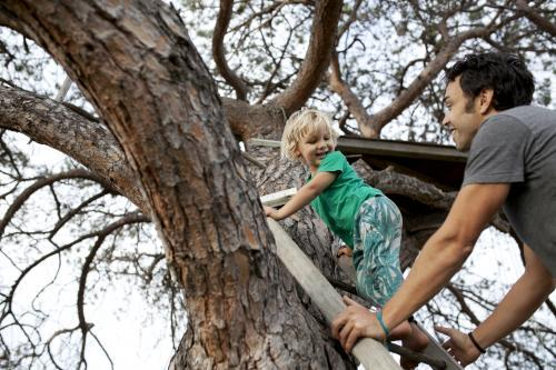 Young boy climbing a ladder up a tree to a treehouse with father