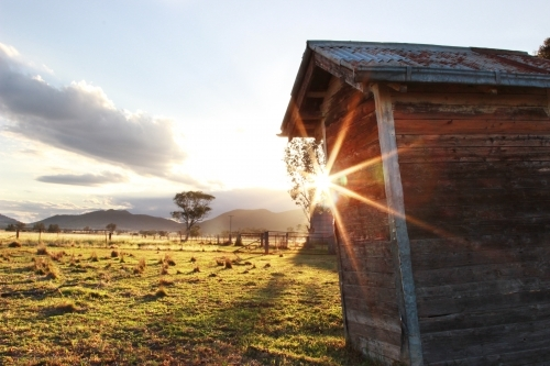 Beautiful sunrise over old outback dunny in a farm paddock