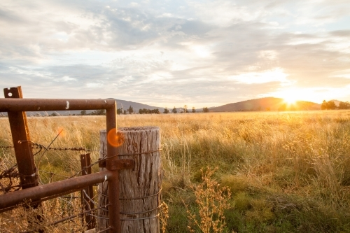 Sunrise on a farm over a rural paddock gate