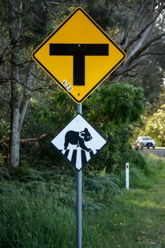 Intersection road sign & black and white road sign warning that koalas cross here