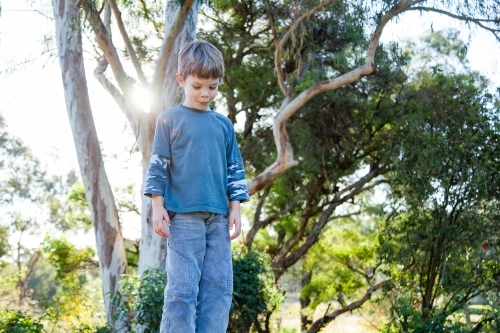 Young boy outside in garden with sun flare looking down