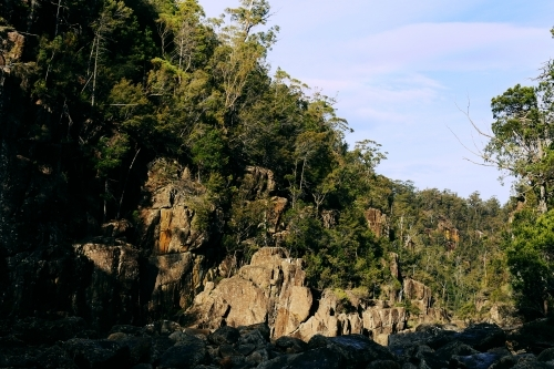 Landscape of rock face with trees in bushland