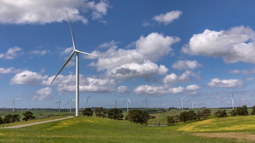 Landscape of wind turbines in countryside setting