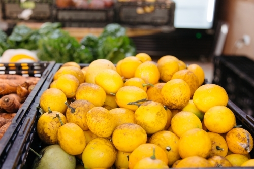 Large pile of bright yellow lemons in a black plastic tub at a grocery store