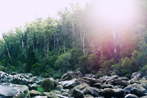 Large rocks in front of bushland with sun flare