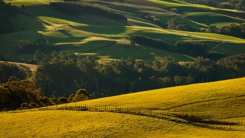 Late afternoon sunlight on rolling hills of farmland