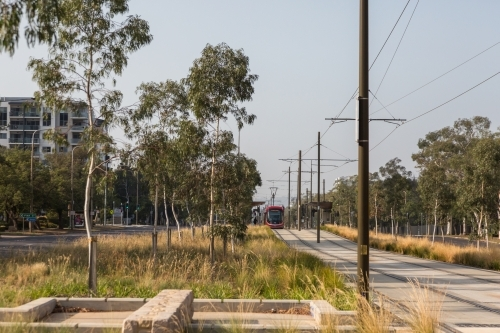 light rail track in Canberra