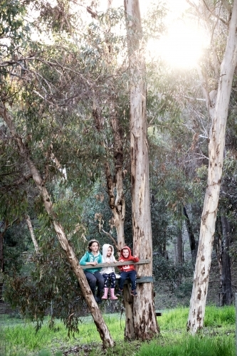 Long shot of three children sitting in a cubby house in gumtrees.