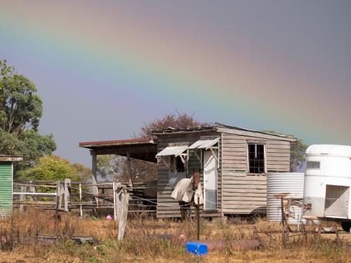 Dilapidated building with horses, rainbow and stormy sky