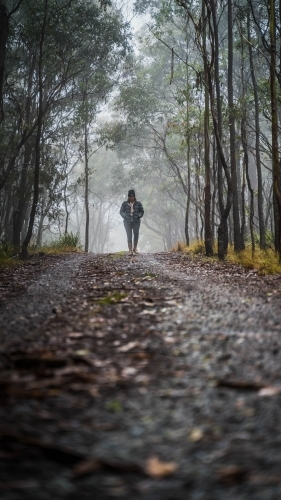 Long view of woman walking through foggy mountain track